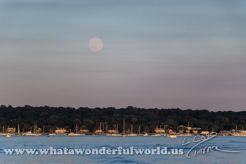 harbor moon