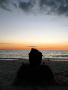 FL 2010 11 129