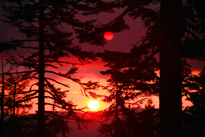 Sunset Through Smoke - Yosemite National Park