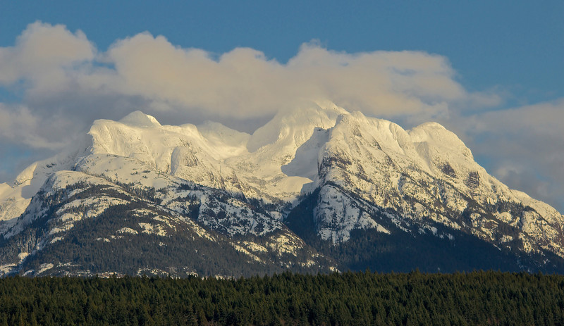 Mt. Arrowsmith