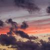 10/09/2013 – 19:57 Gabbiani in volo al crepuscolo della sera. Sestri Levante, Liguria, Genoa Italy