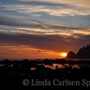 Cape Alava, Washington Coast