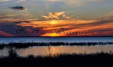 Sunset over Lake Okeechobee, Nubbin Slough. November 2009