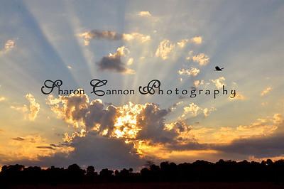 Sunsets, Sunrise.....