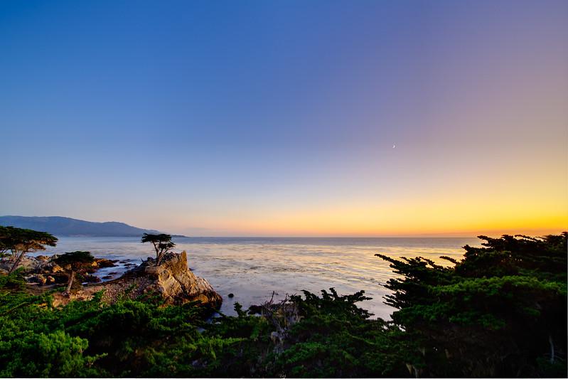 """""""Lone Cypress at Sunset""""  Pebble Beach, Carmel, California"""
