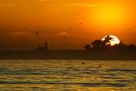 """Santa Cruz Sunset""  Surfer's Museum and Trees at Sunset"