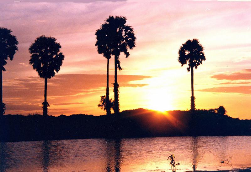 Sunset- Yala Ntional Park Sri Lanka
