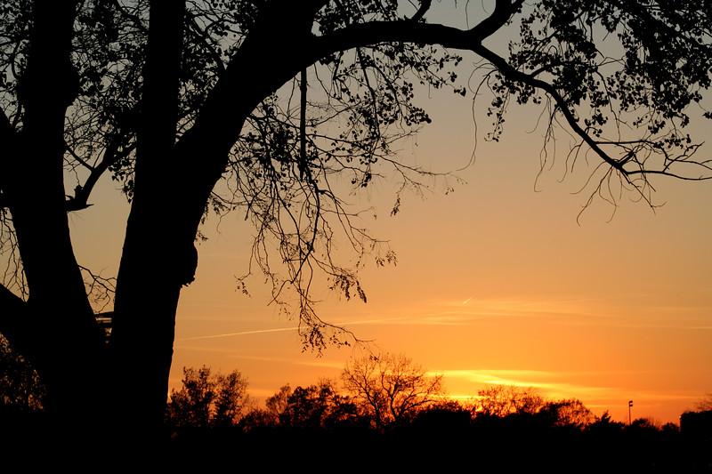 Flushing Meadows at sunset
