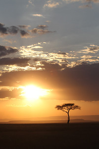 Sunset on the Masai Mara