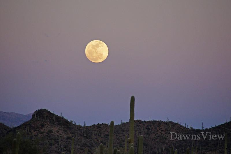 Full Moon Rising, Tucson AZ Feb 17th, 2011