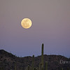 Full Moon Rising, Tucson AZ Feb 17th, 2011