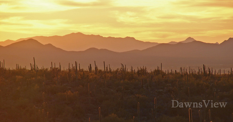 Sunset from a hill behind my house, January 9, 2011, Tucson, Arizona