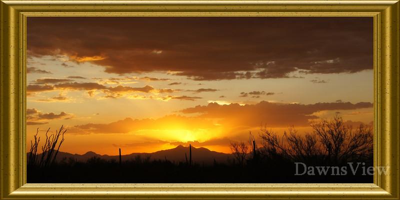 August 5, 2011 Tucson, AZ