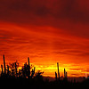 Sunset, Tucson, Arizona, Jan 12, 2012