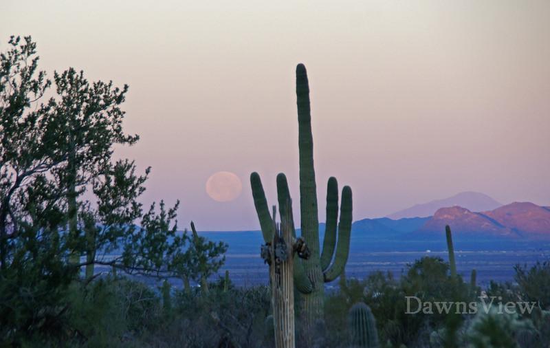 Moon Setting in Tucson Feb 26, 2013