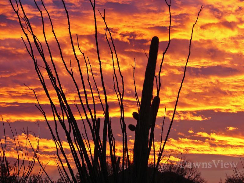 Arizona Sunrise, Tucson, AZ Dec 22, 2010