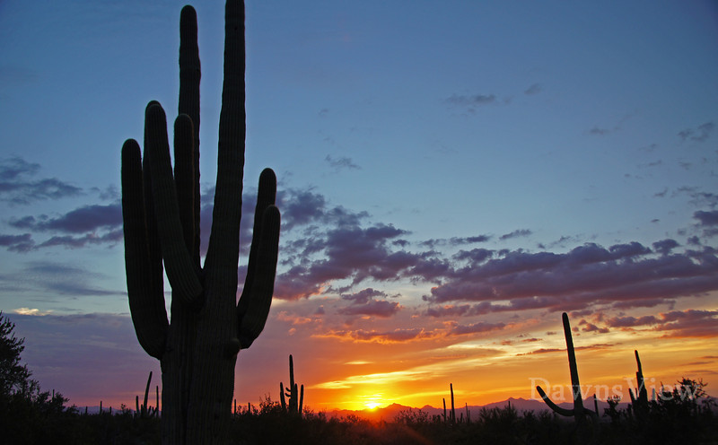 Sunset in Tucson, AZ Sept 5, 2012