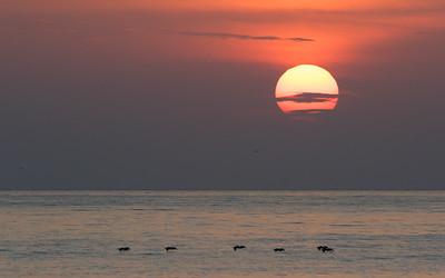 Sunrise - Bijao, Panama