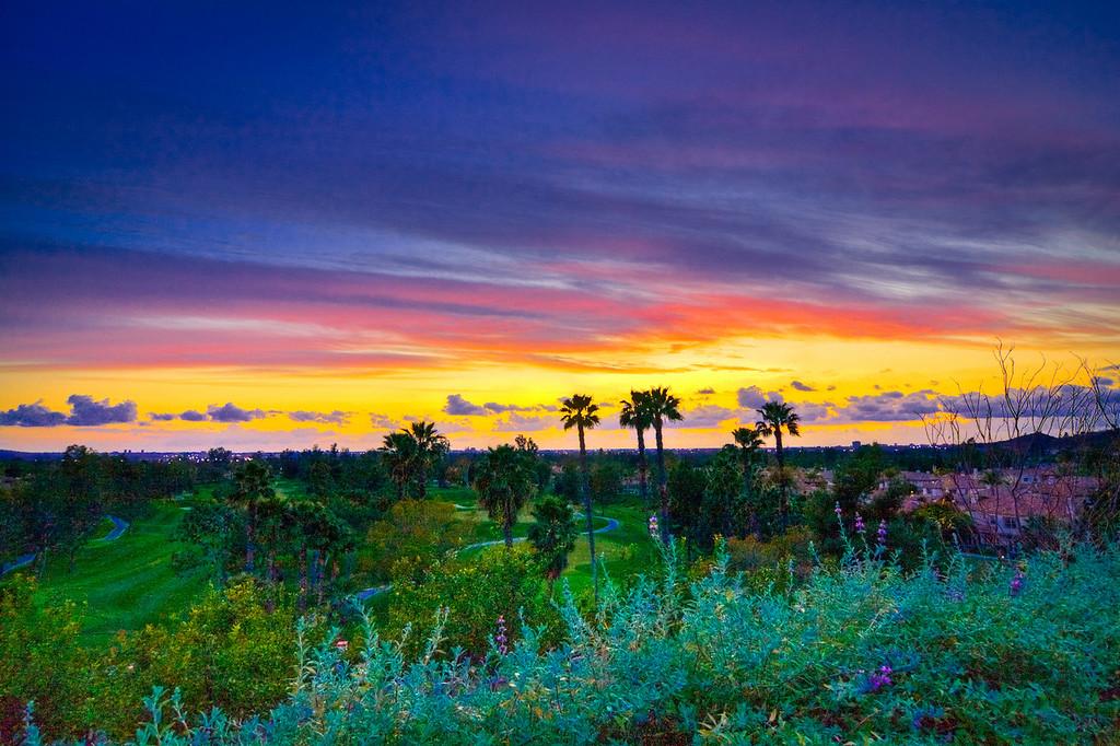 IMAGE: https://photos.smugmug.com/Landscapes/Sunsets/i-ZZ4q2H4/0/a1438b5c/XL/Sunsets%2C%20Palms%2C%20Clouds%2C%20Sky-1-2-XL.jpg