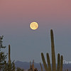 Moon Setting in Tucson Feb 26, 2013