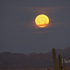 Full moon setting over the Tucson desert, Feb 18th, 2011