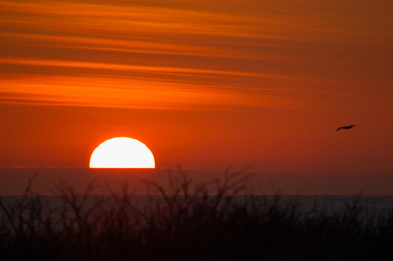 Sunset - Isla Genovesa, Galapagos, Ecuador