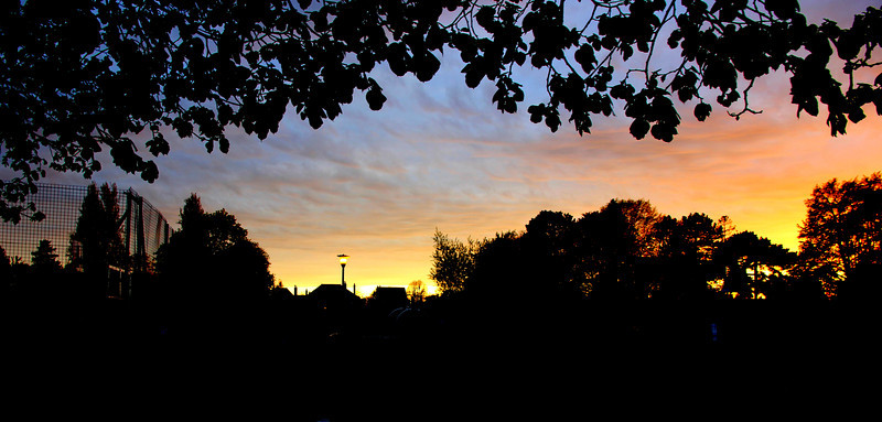 Another silhouette against the absurd colours of the sunset in the park