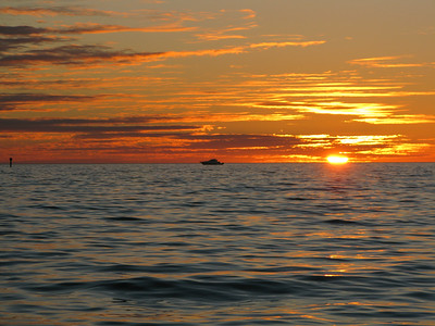 FL 2010 11 197