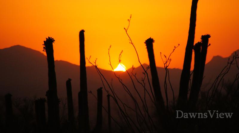May 20, 2012 Eclipse, Tucson , AZ