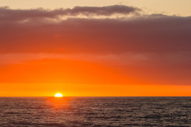 - Punta Vicente Roca, Isla Isabela, Galapagos, Ecuador