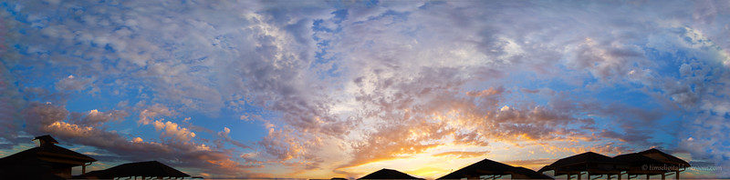 backyard pano 1