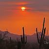 June 29, 2013, Tucson, AZ