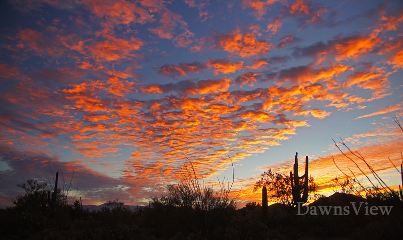 October 2012 Sunrise in Tucson, AZ