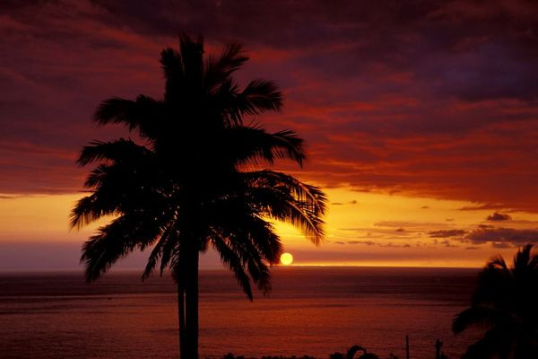 sunset, Kona, Hawaii<br /> ( Central Pacific Ocean )<br /> 1