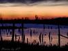 Rverlands Migratory Bird Sanctuary