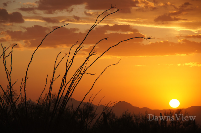 August 19, 2011 Tucson Sunset