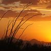 August 19, 2011 Tucson Sunset