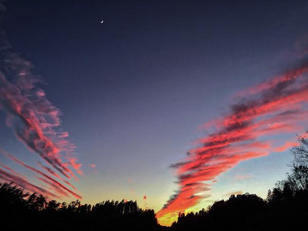 Watta Sky Tonight