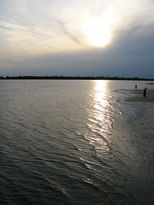FL 2010 04 (63)