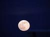 Super Moon 2013