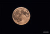 _ASP3757-1 Moon Web