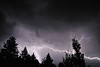 Lightning captured over the pine trees near the shores of North Lake Tahoe, Nevada.