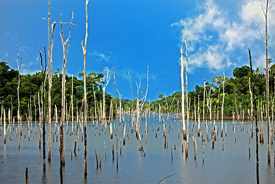 Brokopondo lake (HDR) - Suriname