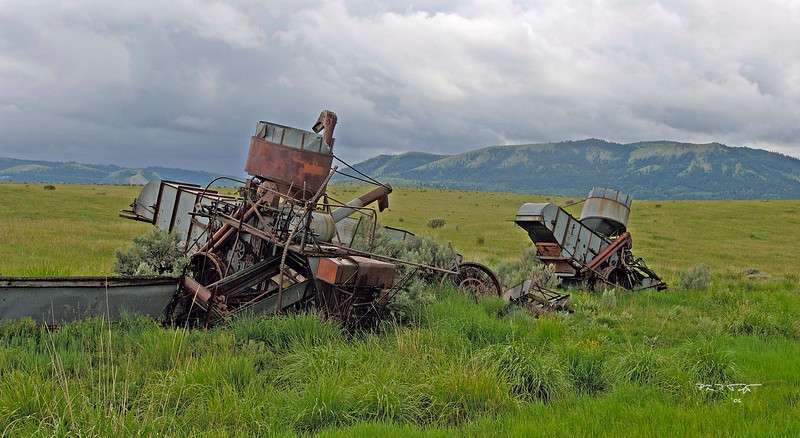 Abandoned farm equipment in high grasslands above Swan Valley, Idaho, June 2006.