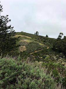 Notch Trail
