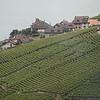 Lucerne_28June2010_30