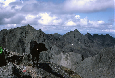 """Kelly"" on Sgurr Sgumain looking north"