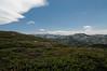 Donner Ridge Trail