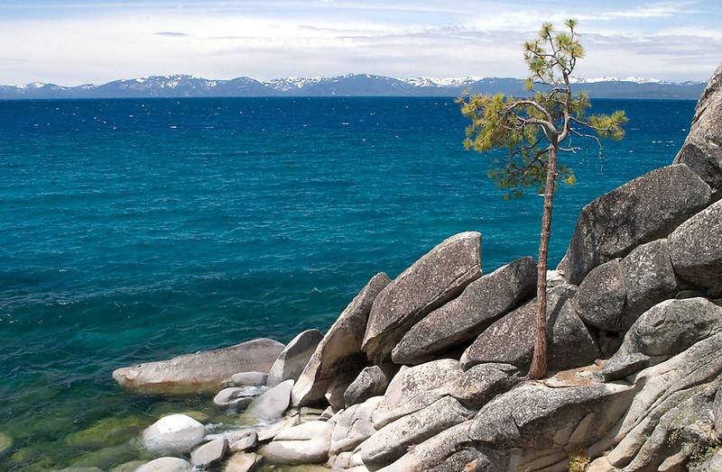 070Lone Tree, Tahoe