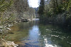 A nice peaceful view downstream of the rapids.